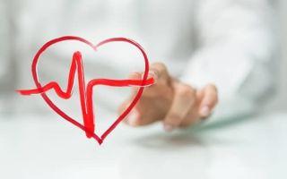 Почему тренировки называют «кардио» и как они действуют