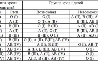 2 группа крови (отрицательная и положительная) — характеристика, совместимость, особенности питания