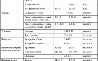 Биохимический анализ крови: расшифровка таблицы, нормы показателей и их интерпретация