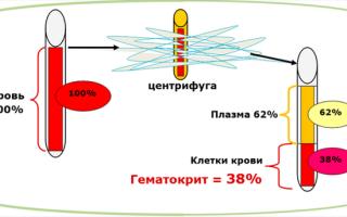 Гематокрит: нормы показателя, причины повышенного и пониженного гематокритного числа