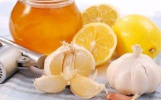 Лимон, чеснок и мед — рецепт для чистки сосудов