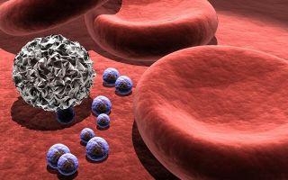 Норма тромбоцитов в крови у женщин с учетом возраста: показатели, таблица