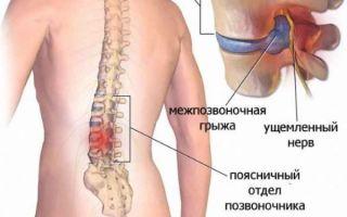 Что общего у гемоглобина и фибриногена