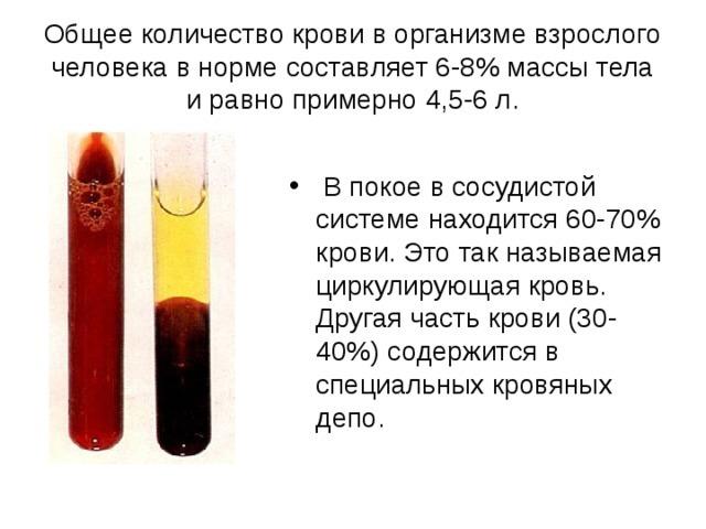 Состав и виды крови человека: определение параметров, характеристик и свойств плазмы