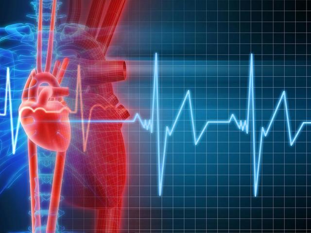 Мерцательная аритмия сердца: что это такое и как лечить народными средствами, отзывы