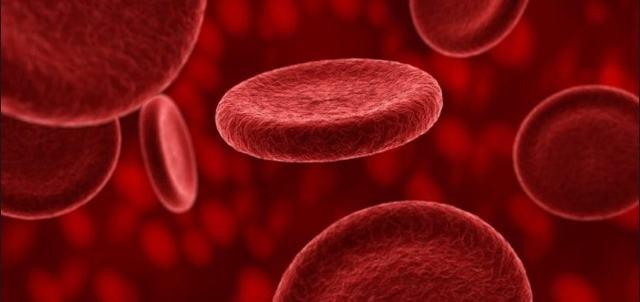 Функции и строение тромбоцитов: количество, размеры, строение, продолжительность жизни