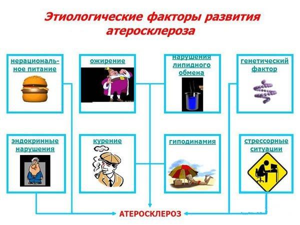 Профилактика атеросклероза: первичная и вторичная