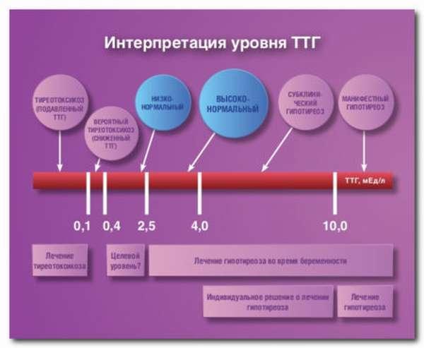 ТТГ норма у женщин по возрасту: сдача анализа крови, результат обследования
