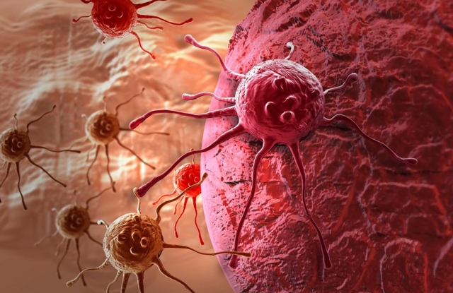 Синяки на теле без причины: что это значит, какие заболевания, диагностика и лечение