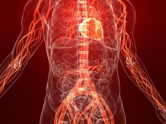 Тромбоэмболия: причины закупорки лёгочной артерии кровяным сгустком, симптомы и методы лечения болезни