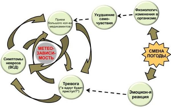 Полезные советы для метеозависимых гипертоников