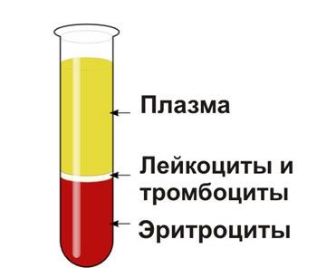 Пониженный гематокрит: причины состояния у взрослых и детей, показатели нормы крови