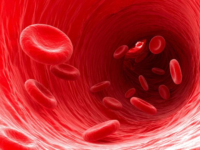 Как алкоголь влияет на кровь: разжижает или сгущает