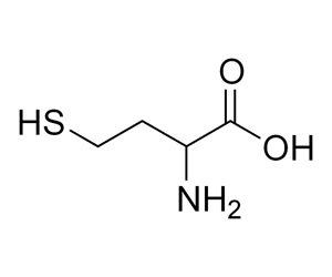 Гомоцистеин: норма метаболита в крови у мужчин и женщин, причины повышения уровня и способы его нормализации