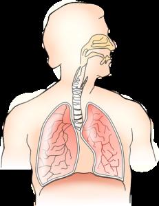 Лёгочная гипертензия: причины и признаки, классификация, методы диагностики и лечения