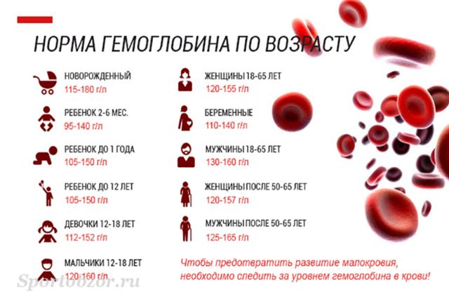 Гемоглобин: норма у женщин по возрасту, таблица, допустимые показатели с 17 до 55 и более лет