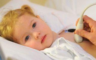 УЗИ сердца ребенку: показания, подготовка, расшифровка, нормы, показания и противопоказания, цена