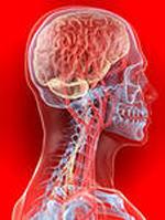 Повышенное внутричерепное давление: признаки, причины, симптомы и лечение у взрослых