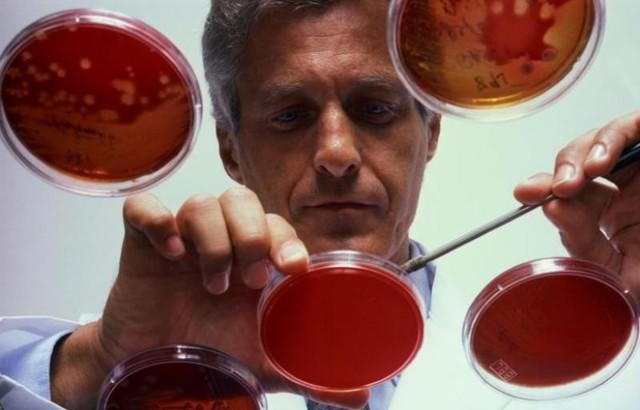 АлАт анализ крови: что это такое, причины повышения и понижения, как сдавать, расшифровка