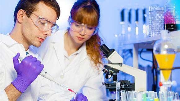 Анализ на токсоплазмоз: показания, как сдавать, расшифровка результатов