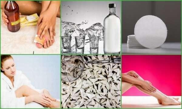 Настойка каланхоэ на водке: применение при варикозе, рецепты, отзывы