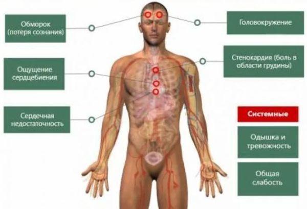 Норма пульса по возрастам у мужчин: таблица, причины патологий