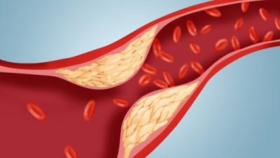 Печеночные пробы: анализ крови, расшифровка, норма и отклонение