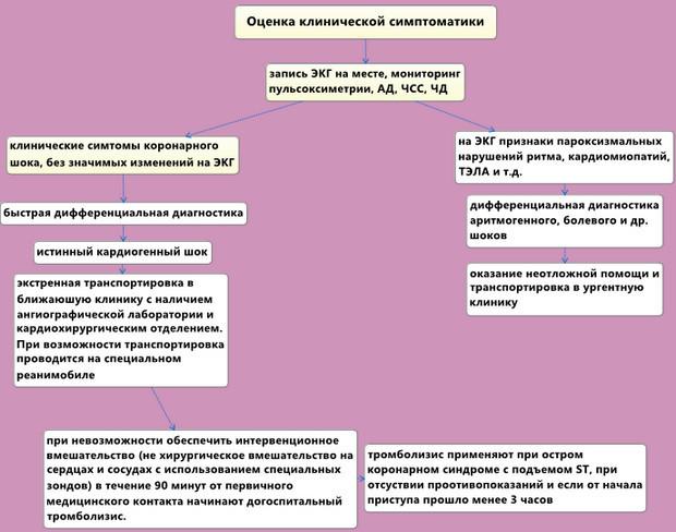 Кардиогенный шок: причины, классификация, клинические признаки и лечение