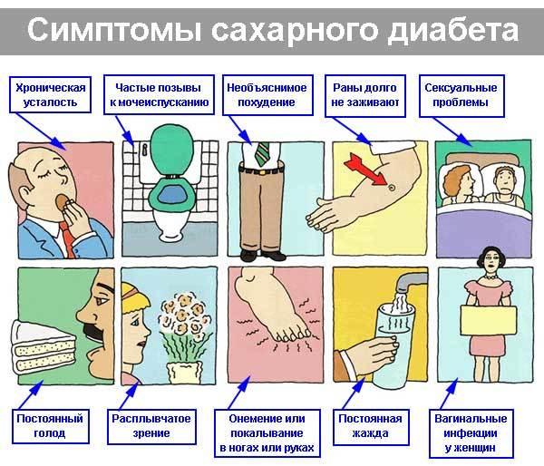 Вторая отрицательная группа крови: характеристика, обозначение, совместимость, редкая или нет