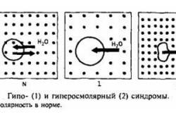 Осмолярность крови (плазмы): суть, анализ, норма и отклонения