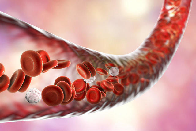 Как быстро понизить билирубин в крови: препараты, народные средства