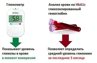 Гликозилированный гемоглобин: показания к назначению анализа, общая расшифровка данных и норма показателя