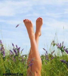 Закупорка вен на ногах: лечение в домашних условиях народными средствами