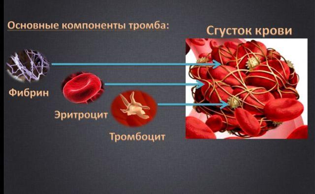 Анализ крови на plt: что это такое, расшифровка, нормы и отклонения показателей