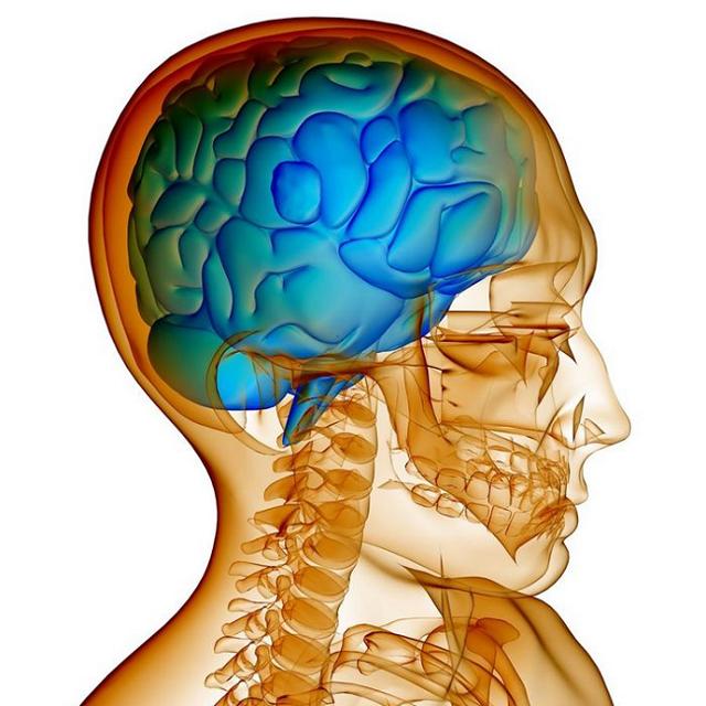 Внутричерепное давление у детей: причины, симптомы и признаки, измерение, лечение