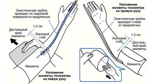 На какой руке мерить давление: правильно на левой, правой или на обеих
