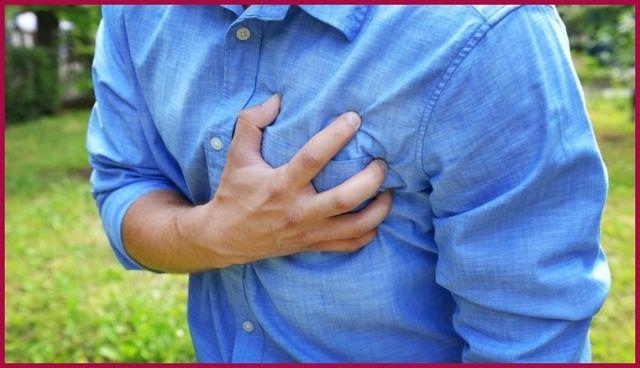 Коронарные артерии: анатомия и заболевания