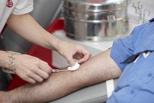Что показывает общий анализ крови из вены: показатели клинического и биохимического исследования