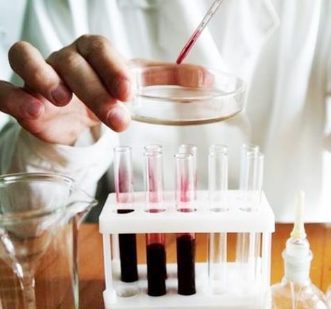 hgb в анализе крови: что это такое, норма у женщин и мужчин, расшифровка