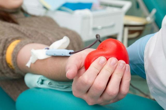 Обновление крови у мужчин и женщин: как часто