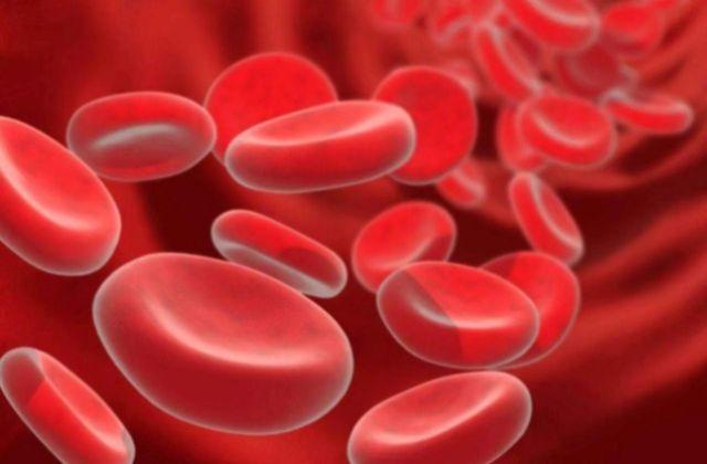 Крапива для поднятия гемоглобина: применение, рецепты с крапивой для повышения гемоглобина