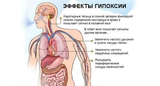 Причины мутной крови и как от этого избавиться
