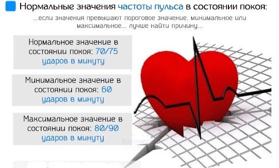Норма пульса по возрастам: влияющие факторы, нормальные значения, измерение частоты сокращений сердца