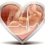 Сердцебиение плода по неделям: норма ЧСС и определение разными методами
