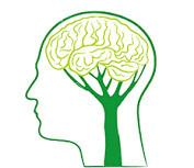 Симптомы инсульта у мужчины: особенности, как распознать предынсультное состояние, терапия