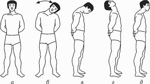 Гимнастика для сосудов головного мозга, упражнения