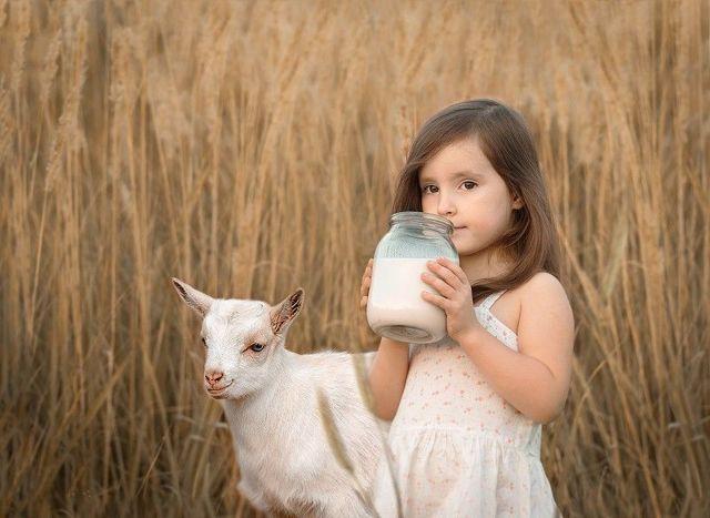 Влияние молока на гемоглобина: понижает или повышает