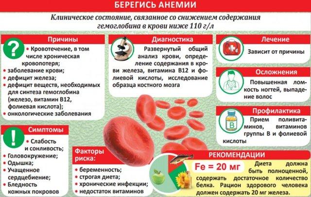 Молотая гречка для гемоглобина: повышает или нет, полезные свойства
