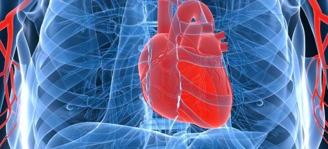 Сердечно-сосудистые заболевания: причины возникновения, основные симптомы и лечение состояний