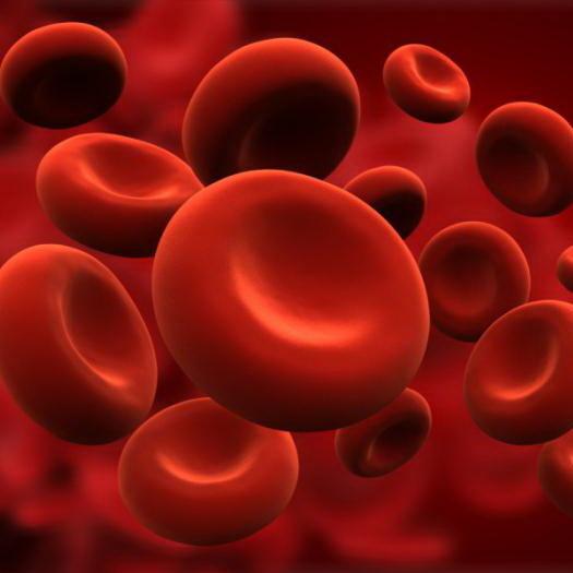 Средний объем тромбоцитов повышен или понижен: что это значит, причины и нормализация показателя, что делать